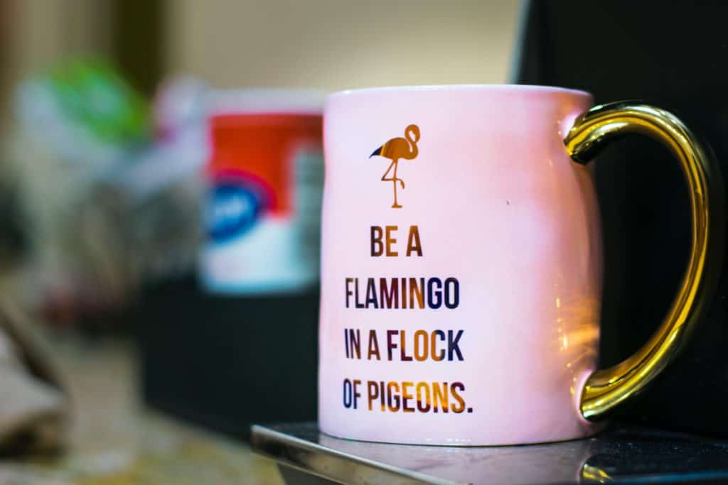 """Be a flamingo in a flock of pigeons"" - Bryce Koch"